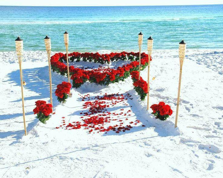 زفاف - حفلات الزفاف - حفلات الزفاف شاطئ