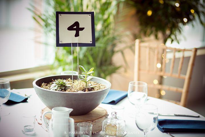 زفاف - لالتقاط الأنفاس الخريف حوض الزفاف في برلنغتون