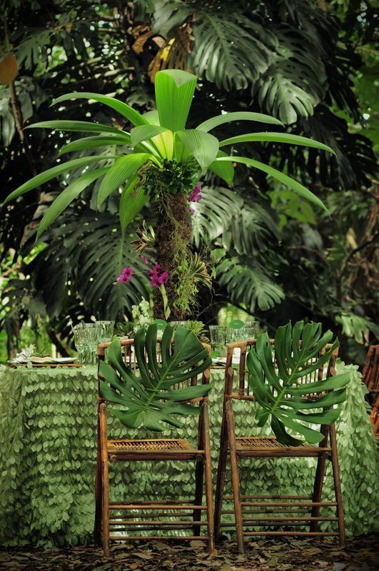 Matrimonio Tema Tropicale : Boda tropical recepción de bodas ideas selva