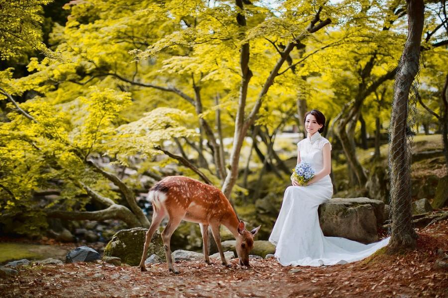 Свадьба - 幸福 无价-3.jpg