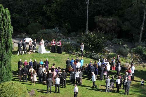 زفاف - حفلات الزفاف في الهواء الطلق، حديقة،