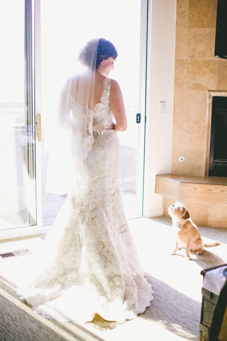 Wedding - Weddings-Bride,Veil