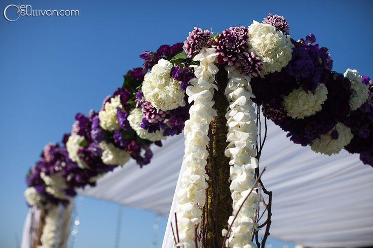 زفاف - Wedding CEREMONY