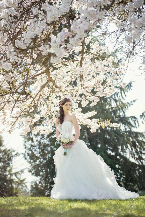 Hochzeit - Vancouver's Cherry Blossoms
