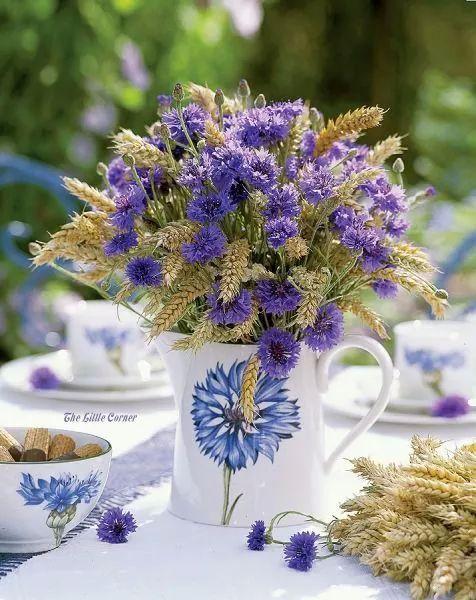 Wedding - Weddings-Purple