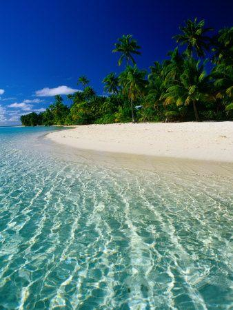 Свадьба - BEACHES-the Beautiful