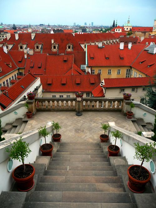 Wedding - Prague