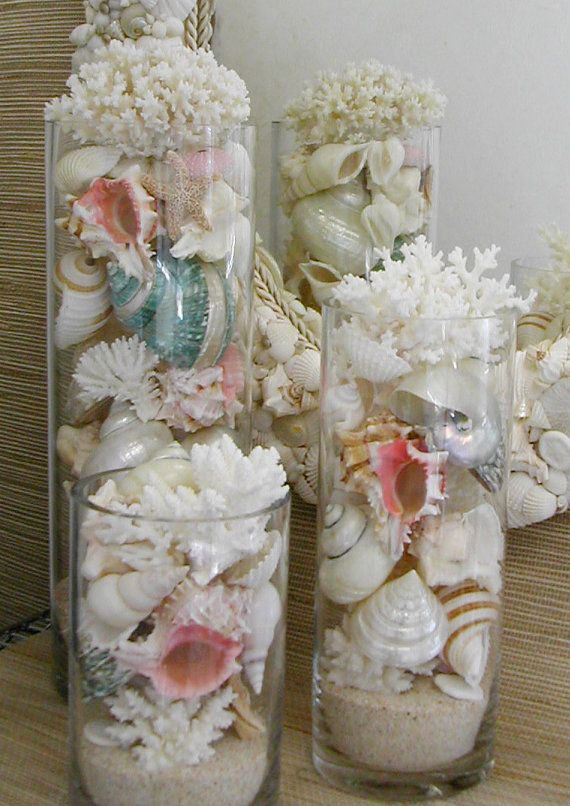Beach Decor Seashells Coral And Starfish In Glass Cylinders