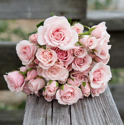 Hochzeit - Pink Bouquet