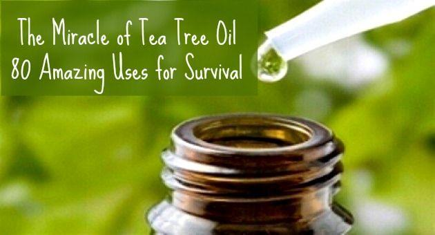 Свадьба - Essential Oils For Survival – 80 Tea Tree Oil Uses