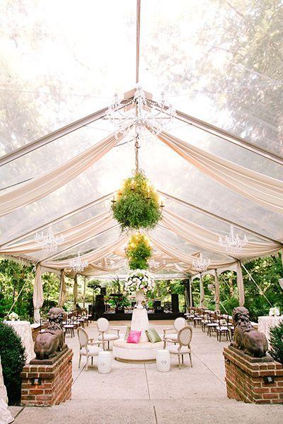 زفاف - Transform Your Wedding Into An Enchanted Garden