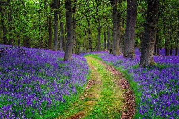 Boda - Beautiful Places