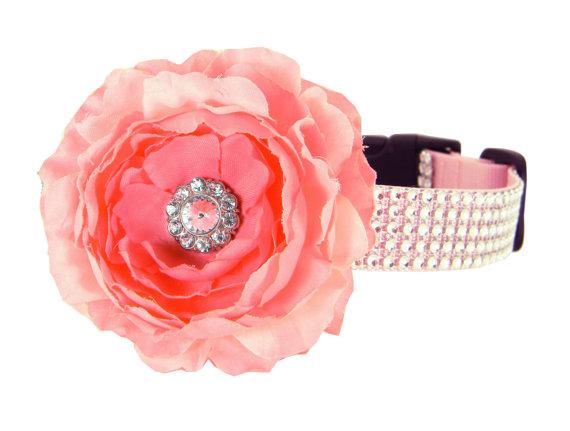 Wedding - Pink Rhinestone Dog Collar Flower Set,  Wedding Dog Collar Flower, Girl Dog Collar: Silver/ Blush Rhinestone