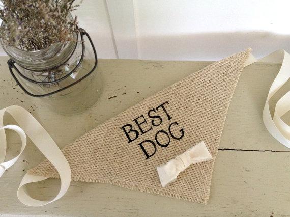 Mariage - Ivory Best Dog Boy Bowtie Dog Collar Bandana Rustic Burlap Wedding Photo Prop