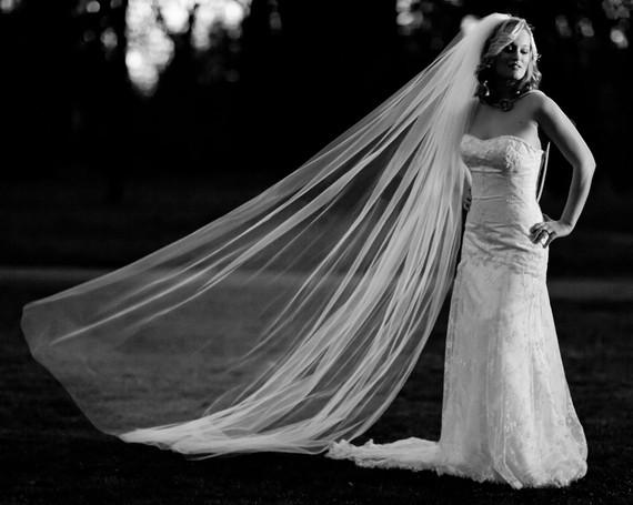"Mariage - Scattered Crystal Veil Cathedral Length Wedding Veil 125 Swarovski Crystal Rhinestones 108"" wide, long white, ivory, champagne cut edge veil"