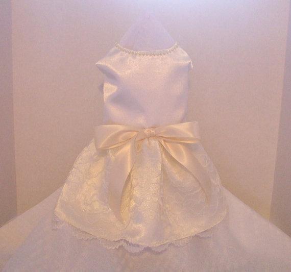 Свадьба - Dog Wedding Dress, Ivory Satin and Lace