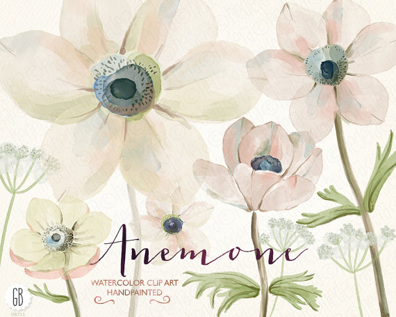 Düğün - Watercolor flowers, anemones, hand painted, queen anne's lace, clip art, anemone, ranunculus, wedding flowers, diy invitation, stationery