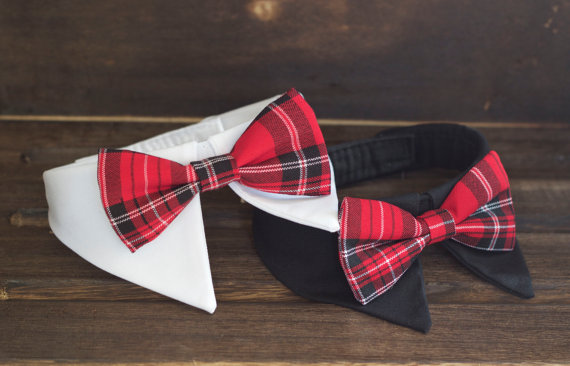 Свадьба - UsagiTeam pet shirt collar for Christmas, holiday season gift for dog and cat, shirt collar with red blue tartan check red plaid preppy