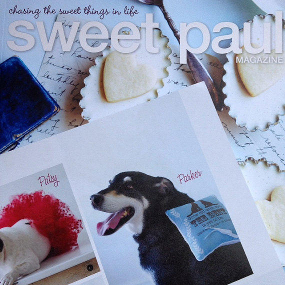 Свадьба - Custom Ring Pillow for Your Dog to Wear - Your Dog -  Grow Old with Me Quote - Personalized - As Seen in Sweet Paul Magazine