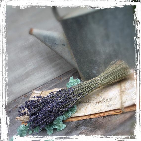 Hochzeit - Dried Lavender Bundle - Bunch, Purple, Fragrant - DIY Weddings - Supplies - Stems, French, Flowers, Herb, Herbal Bouquet