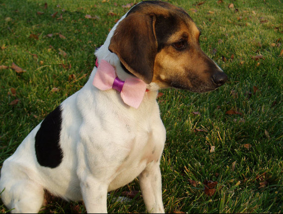 Свадьба - Dog Bow Tie Collar Slider Attachment, PINK doggie bowtie formal wear, Pet Clothing valentine wedding birthday SMALL or LARGE