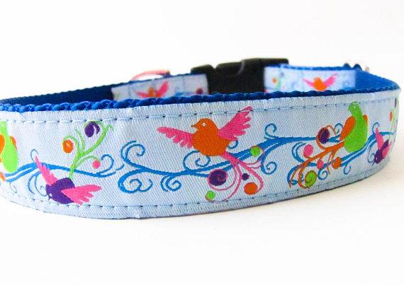 Wedding - CLEARANCE SALE - Songbirds dog collar in blue - Medium