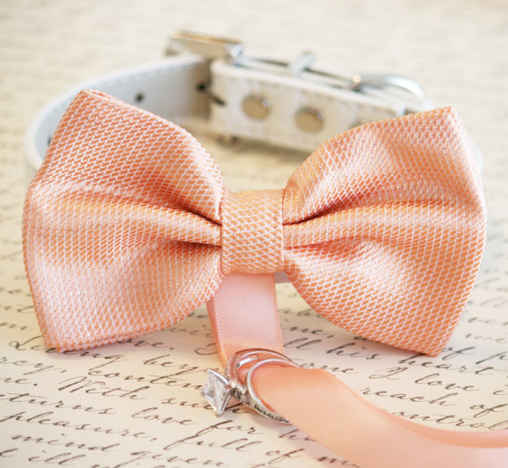 زفاف - Peach Dog Bow Tie, Dog ring bearer, Pet Wedding accessory, Pet lovers, Peach wedding accessory