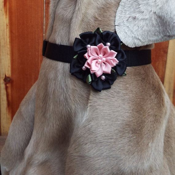 Свадьба - Black & Pink Fabric Flower Dog Collar Accessory for Cats and Dogs - Great Wedding Accessory for your pet!