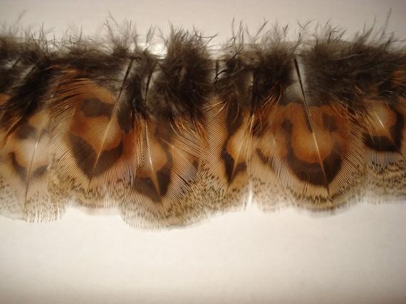 Mariage - 12 Inch Lady Pheasant Feathers Fringe  Trim