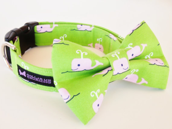 زفاف - Dog Collar Bow Tie Set Beluga