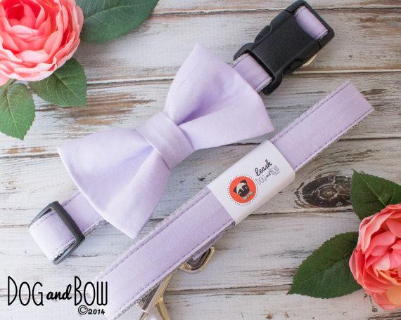 Свадьба - Light Purple Dog Collar with Optional Removable Bow Tie