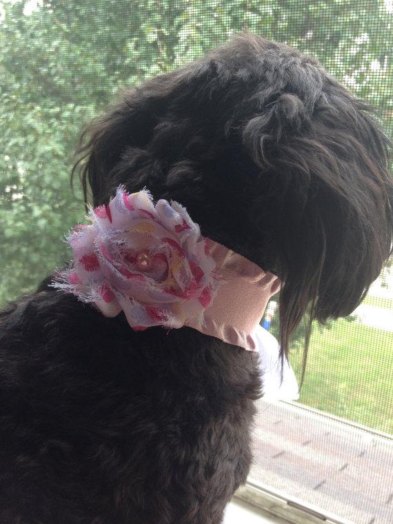 Свадьба - DOG FLOWER COLLAR -  Pink ribbon collar with flower, Pet Wedding,Ties on, Pet Flower, Dog Wedding, Pet Corsage, Dog flower , Dog Bow
