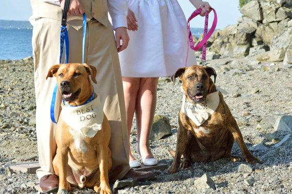 Свадьба - Ivory Dog of Honor Girl Collar with Flowers Bandana Rustic Burlap Wedding Photo Prop