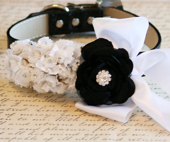 زفاف - Black and White Wedding dog collar,  Pet wedding Accessory, Floral dog collar, Black and white wedding idea, Dog Lovers