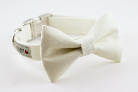 Свадьба - Solid Ivory Wedding Bowtie Dog Collar with Nickel Buckle