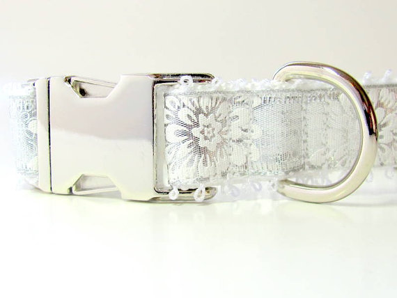 Свадьба - Wedding Dog Collar in Glistening Silver and Frosty White