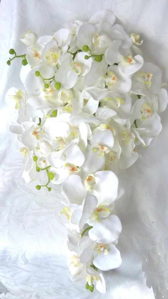 Cascading white orchid bouquet boutonniere phalaenopsis cascading white orchid bouquet boutonniere phalaenopsis destination wedding flowers mightylinksfo