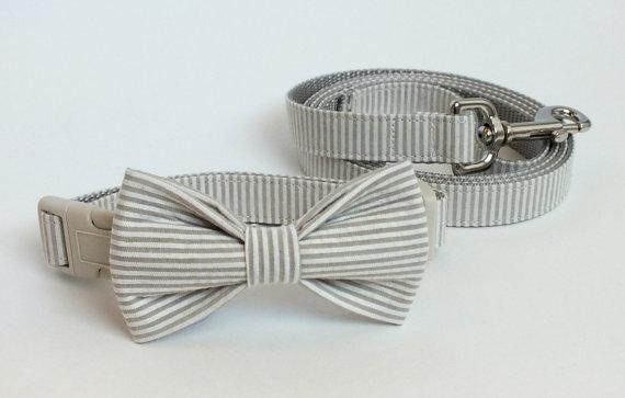 زفاف - Khaki Seersucker Collar and Leash Wedding Set