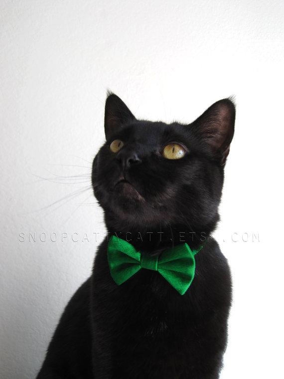 Свадьба - Cat Bow Tie - Satin - More Colors