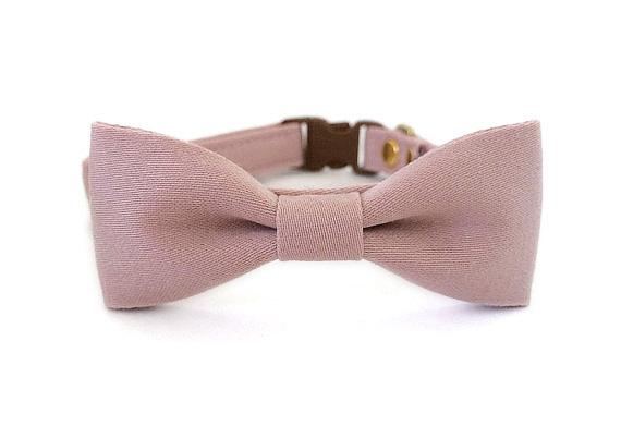 زفاف - Dusty Rose Dog Cat Collar