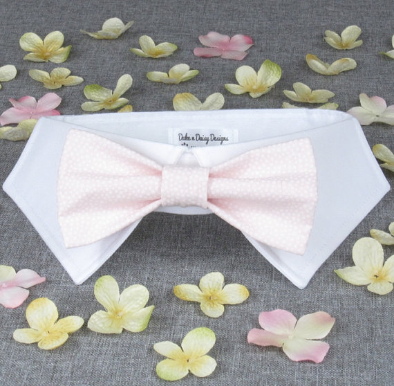 Mariage - Blush Wedding Dog Bow Tie, Dog Bowtie- Dog Ring Bearer, Bowtie Dog, Pet Wedding Attire, Pink Wedding Pets