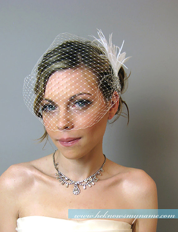 Mariage - Weddings Accessories Bridal Birdcage Veil with Feather Spray Headpiece - bridal hair comb, feather, bridal fascinator