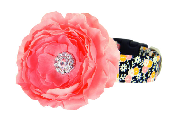 Свадьба - Pink Yellow Black Flower Dog Collar/ Wedding Dog Collar Flower Set: Midnight Vines with Blush Rani
