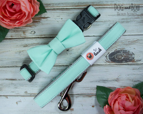 Свадьба - Mint Dog Bow Tie Options For Dog Collar, Dog Leash I Dog and Bow Wedding