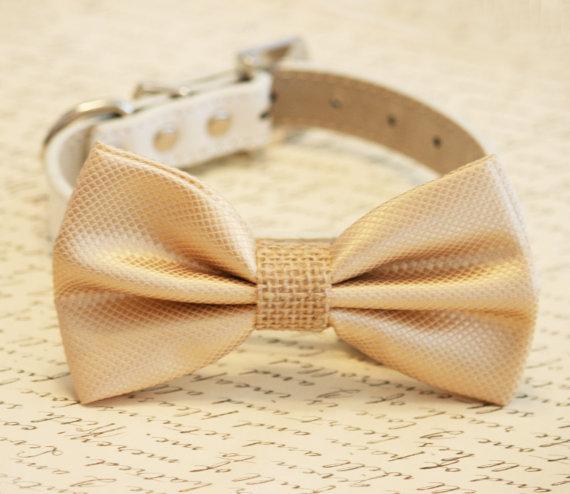 Свадьба - Champagne and burlap Dog Bow Tie, Burlap Wedding, Pet Accessory, Birthday Gift, Dog Lovers, Burlap Pet wedding accessory