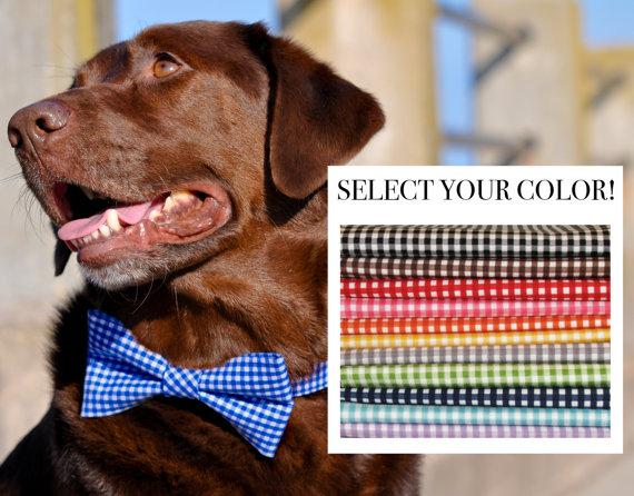 زفاف - Gingham Girl Bow or Bow Tie Dog Collar