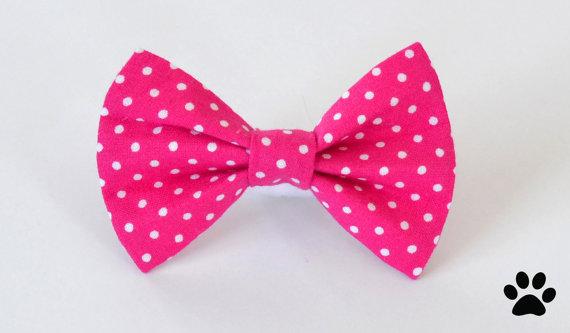 زفاف - Raspberry pink polka dot - cat and dog bow tie