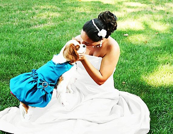 Свадьба - Dog Pet Dresses: Custom Wedding Colors dog bridal wear Match Your Wedding Colors or