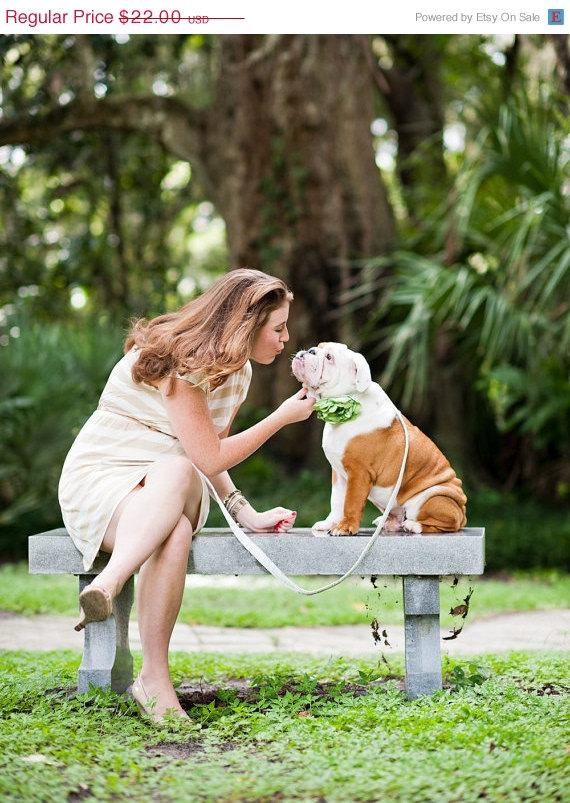 Свадьба - ON SALE Lime Dog Collar Flower - Satin and Rhinestone Wedding Accessory for Pets