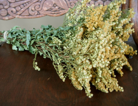 Wedding - SALE    Lovely Natural Dried Goldenrod Flowers for Wedding Country Prim Decor Craft Cottage